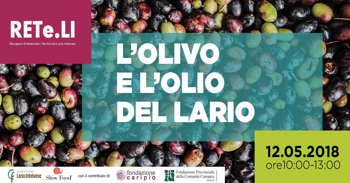 L'olivo e l'olio del Lario